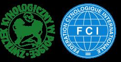 CARUSO z Mazowieckiego Rodu (FCI)